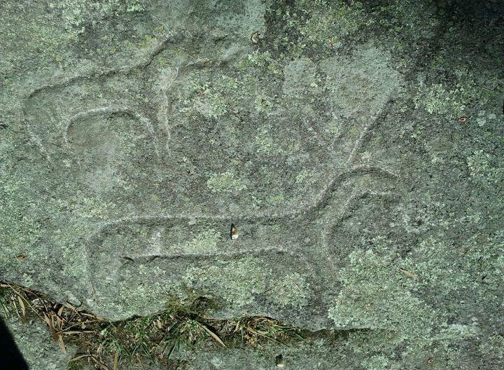 Petroglifo Outeiro de Cribo_wikipedia